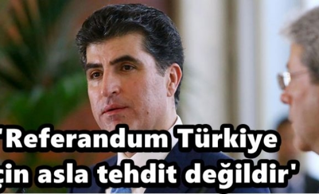 'Referandum Türkiye için asla tehdit değildir'