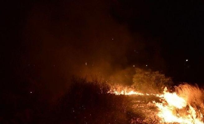 Tatil sitelerinin önünde çıkan yangın korkuttu