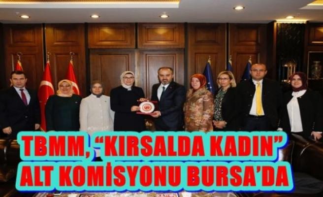 "TBMM, ""KIRSALDA KADIN"" ALT KOMİSYONU BURSA'DA"