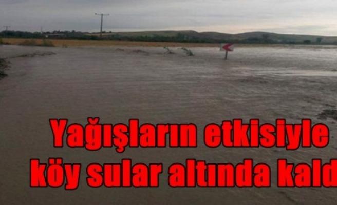 Yağışların etkisiyle köy sular altında kaldı