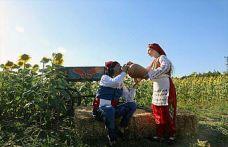 Edirne'de fotoğraf tutkunları ayçiçeği tarlasında bir araya geldi