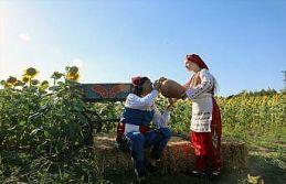 Edirne'de fotoğraf tutkunları ayçiçeği tarlasında...
