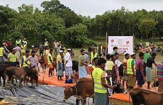 Cox's Bazar'daki Arakanlı Müslümanlara kurban yardımı