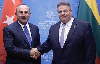 Litvanya Dışişleri Bakanı Linkevicius: Türkiye'yi...