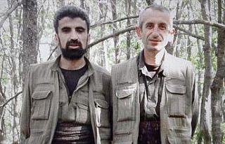 Terör örgütü PKK'nın Erzurum grubuna ağır...