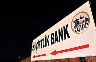 Çiftlik Bank'ın 'finans müdürü' tutuklandı