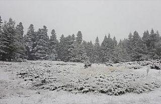 Ankara'ya mevsimin ilk karı düştü