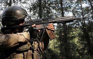 Muş'ta 5 PKK'lı terörist etkisiz hale getirildi