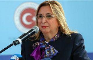 Ticaret Bakanı Pekcan: Macar firmaları Türkiye'deki...