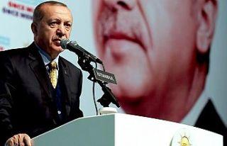 Cumhurbaşkanı Erdoğan: Teröristleri inlerinde...