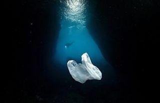 Denizlerde plastik kirliliğiyle mücadele için 400...