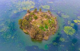 Kuş cenneti Gölbaşı turizme kazandırılacak