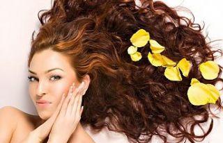 Palette Saç Boya Ve Bakım Ürünleri
