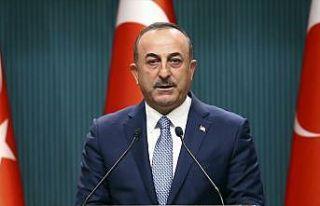 Dışişleri Bakanı Çavuşoğlu: Fransa'nın YPG...