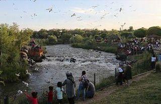 'Doğunun incisi' Van turistleri cezbediyor