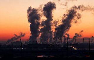 'Hava kirliliği, ekosisteme olumsuz etkisi olan bir...