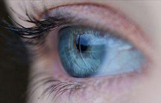 'Lens ve güneş gözlüklerinin online satışı...