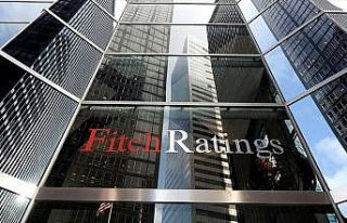 Fitch Ratings Direktörü Parker: Türkiye ekonomisi...