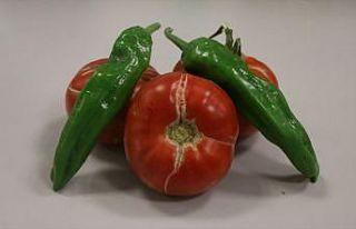 'Sazlıca domatesi' ve 'Bor biberi'nin gen kaynakları...