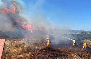"""Bekir Karacabey; """"Ormanda ateş yakmak yasaktır''"""
