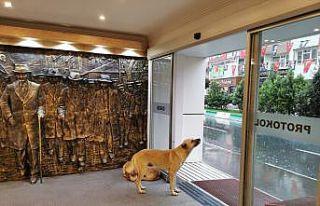 Kırklareli Belediyesi sağanak nedeniyle kapılarını...