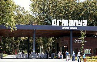 Ormanya'da yılın ilk 9 ayında 579 yaban hayvanı...