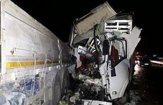 Bilecik'te bozulan tırı tamir eden sürücüye kamyonet...