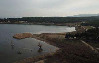 Bilecik'teki Pelitözü Göleti'nde yağış...