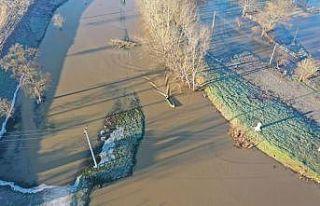 Edirne'de yer yer taşkın yapan Tunca Nehri...
