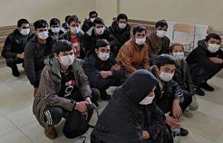 Kocaeli'de 11 düzensiz göçmen yakalandı