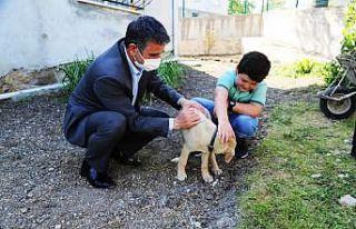 Kandıra Belediye Başkanı Turan'dan hayvansever...