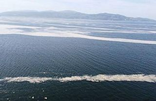 Marmara Denizi'nin birçok noktasına yayılan...