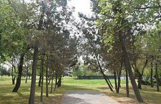 Millet bahçesine dönüştürülecek Hünkar Çayırı'nda...