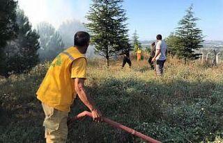 Bursa'da ormanlık alanda çıkan yangına müdahale...