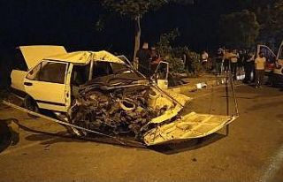 Sakarya'da otomobil ağaca çarptı: 1 ölü,...