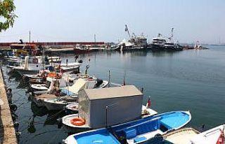 Tekirdağlı balıkçılar müsilaj nedeniyle denize...