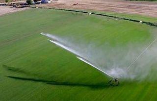 Trakya'da bu yıl 695 bin 720 dekar tarım arazisi...