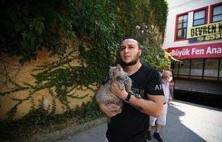 Bursa'da yangında mahsur kalan kedileri itfaiye...