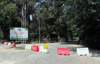 Edirne'de ormanlık alanlara girişlere izin...