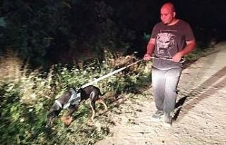 Sakarya'da sulama kanalına düşen çocuk kayboldu