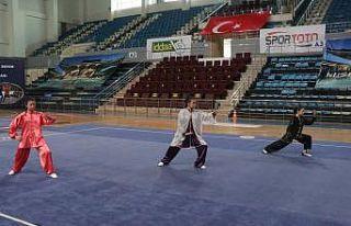 Sakarya'da Türkiye Gençler ve Büyükler Wushu...