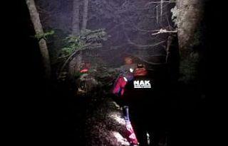 Uludağ'da ormanda kaybolan kadın için arama...