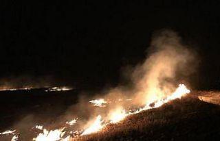Edirne'de anız yangının sıçradığı ayçiçeği...
