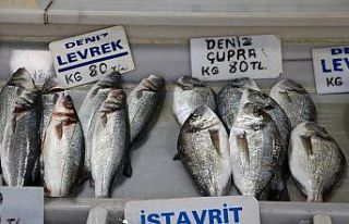 Denizlerdeki balık bolluğu Tekirdağ'da tezgahlarda...