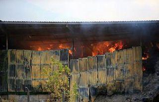 Kırklareli'nde besi çiftliğindeki yangını...