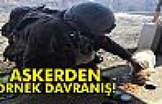 Askerden örnek davranış: Kumanyasını sokak köpeğiyle...