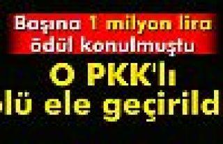 Başına 1 milyon lira ödül konulan PKK'lı ölü...