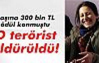 Başına 300 bin TL ödül konulan PKK'lı terörist...