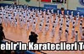 Büyükşehir'in Karatecileri Terfi Etti