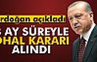 Cumhurbaşkanı Erdoğan: '3 ay süreyle OHAL kararı...